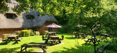 A342 dog-friendly pub and dog walk on Salisbury Plain, Wiltshire - Driving with Dogs