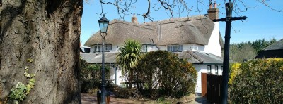 M27 Junction 1 doggiestop with pub and walk, Hampshire - Driving with Dogs