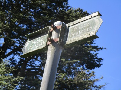 Chilterns dog-friendly pub and dog walk, Buckinghamshire - Driving with Dogs