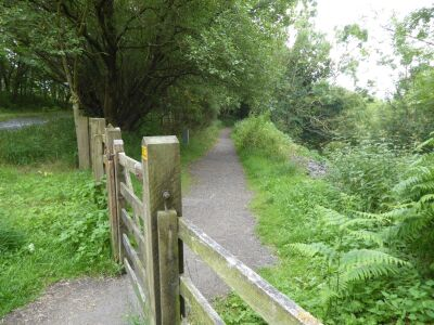 A dogwalk with no stiles or livestock near Haltwhistle, Northumberland - Driving with Dogs
