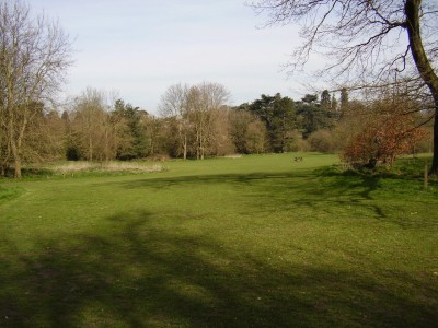 Manor Park dog walk and country park, Kent - Driving with Dogs