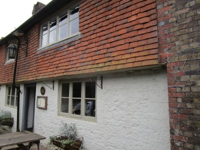 A283 South Downs dog walk and dog-friendly pub, West Sussex - Driving with Dogs