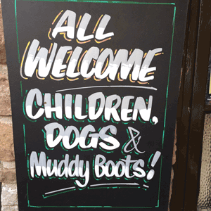 Mendips walks and a dog-friendly pub, Somerset - Driving with Dogs