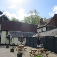 A134 dog-friendly pub with large garden and hard surface walk, Suffolk - Suffolk dog-friendly pubs.jpg