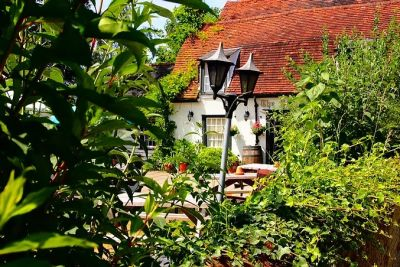 Lovely country pub with a short dog walk, Essex - Driving with Dogs