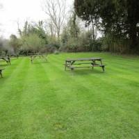 A272 dog-friendly pub and dog walk near Hickstead, West Sussex - Sussex dog-friendly pub and dog walk.JPG