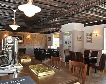 Riverside dog walk and dog-friendly Fenland pub, Cambridgeshire - Driving with Dogs