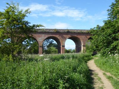 Riverside dog walk, bakery and picnic spot, Yorkshire - Driving with Dogs