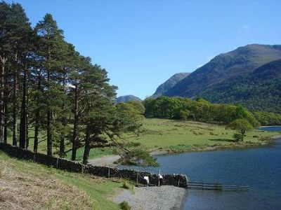 Lake District dog swimming and dog walks, Cumbria - Driving with Dogs