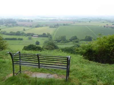 Country park dog walks and pub with a view, Somerset - Driving with Dogs