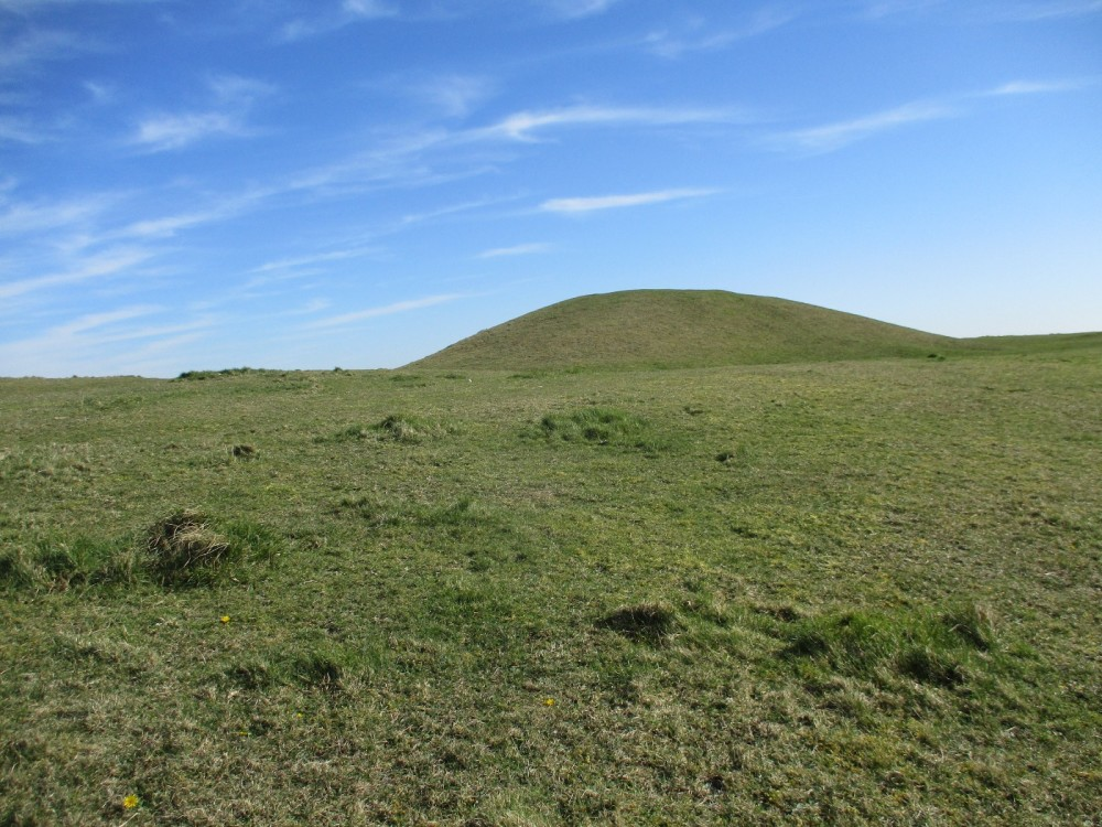 Dog walk on the roof of White Sheet, Wiltshire - Wiltshire dog walking places.JPG