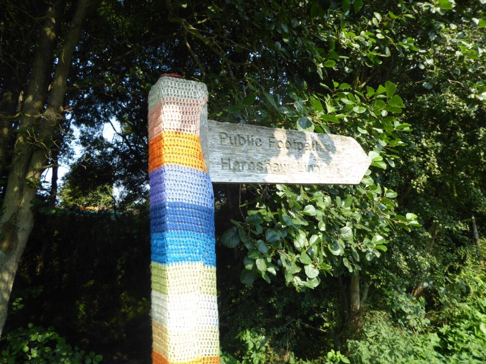 Waterfalls dog walk and dog-friendly pubs, Northumberland - P1030647.JPG