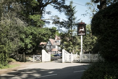 A35 New Forest dog-friendly inn and walks, Hampshire - Driving with Dogs