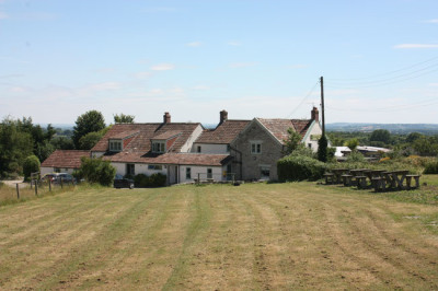 A358 Dog-friendly pub and dog walk, Somerset - Driving with Dogs