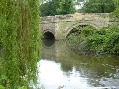 A small-scale hall and pretty dog-friendly gardens, North Yorkshire - Driving with Dogs