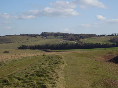 A dog walk through time and space, Dorset - Driving with Dogs