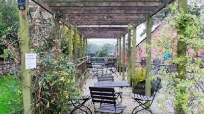 A354 Dog-friendly pub and walk to the Ridgeway, Dorset - Driving with Dogs