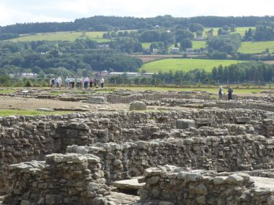 A69 Roman Garrison Town - dog-friendly attraction, Northumberland - Driving with Dogs