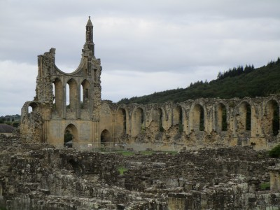 Abbey ruins visit and dog walk, Yorkshire - Driving with Dogs