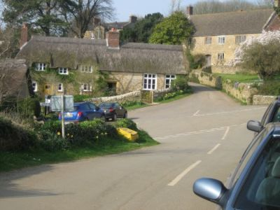 Riverside stroll with the dog and dog-friendly B&B, Dorset - Driving with Dogs