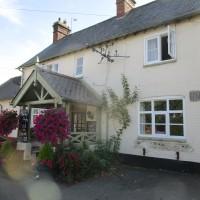 A6 dog walk and dog-friendly pub, Leicestershire - Dog-friendly pub and dog walk near Foxton Locks, Leicestershire