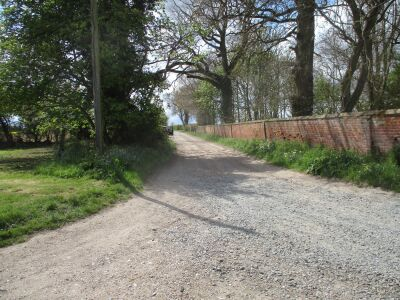 Elegant dog walks and a very fine inn with dog-friendly B&B, Norfolk - Driving with Dogs