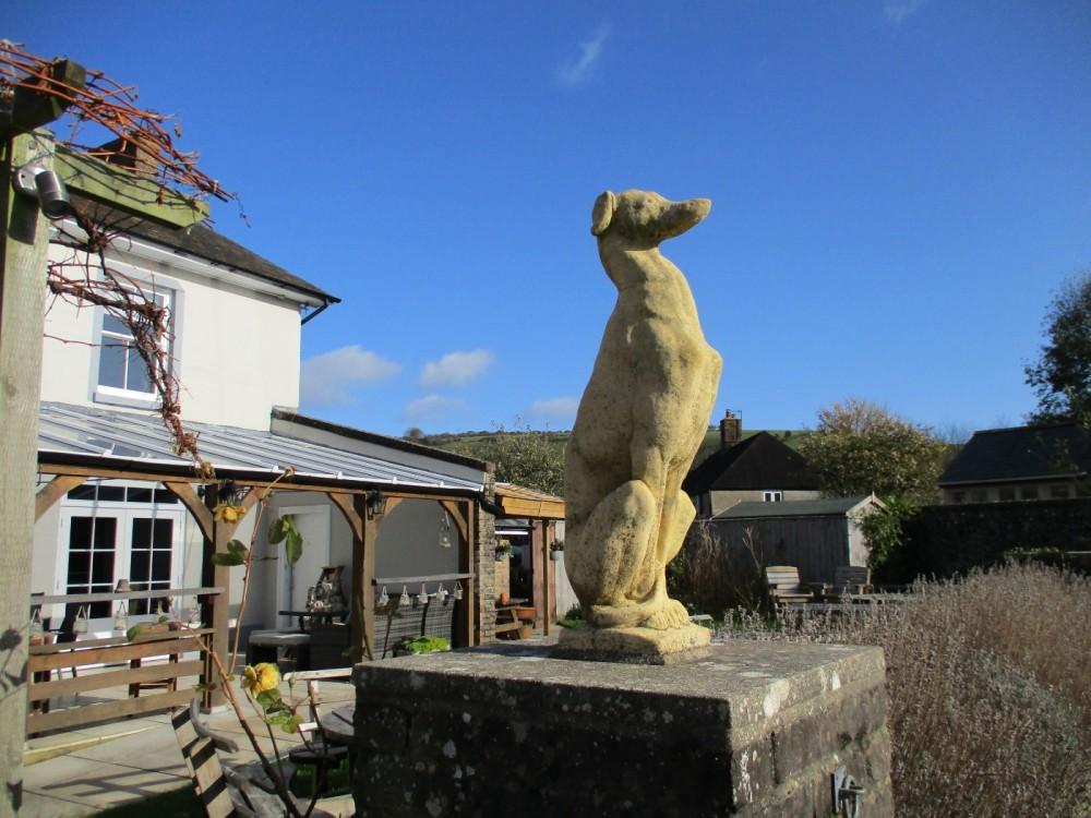 Country dog walk and pub near Dorchester, Dorset - IMG_0210.JPG