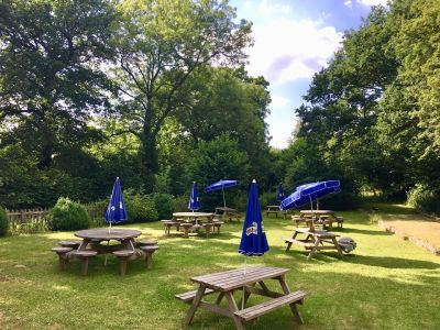 A4 dog walk and dog friendly pub near Maidenhead, Berkshire - Driving with Dogs