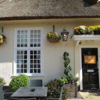 Country pub and dog walk near Bury St Edmunds, Suffolk - Suffolk dog-friendly pubs with dog walks