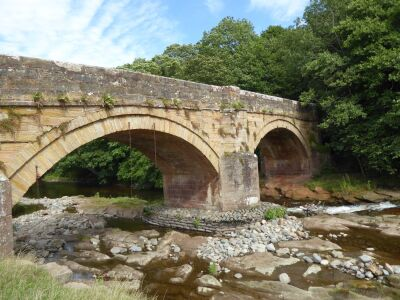 Riverside dog walk and swimming, Cumbria - Driving with Dogs