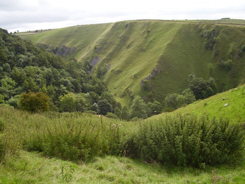 A515 near Ashbourne dog walk and dog-friendly pub, Derbyshire - Peak District dog walk and dog-friendly pub