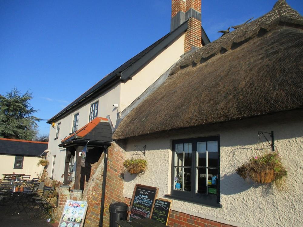 Dog-friendly community pub near Wimborne, Dorset - Dorset dog-friendly pub.JPG
