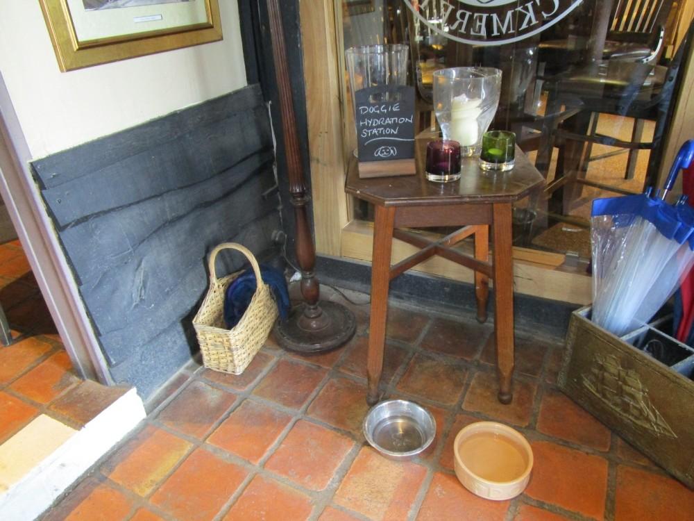 A259 dog-friendly pub and dog walks near Seaford, East Sussex - East Sussex dog-friendly pub and dog walk.JPG