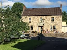 Chew Valley dog-friendly inn and dog walk, Somerset - Driving with Dogs