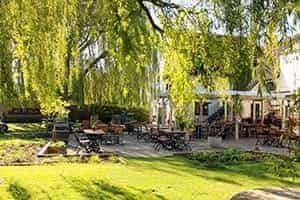 A34 dog-friendly pub and walk near Oxford, Oxfordshire - Driving with Dogs