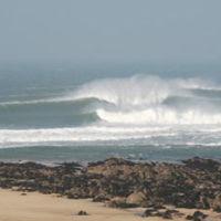 Freshwater West dog-friendly beach, Pembrokeshire, Wales - Pembrokeshire dog-friendly beaches.jpg