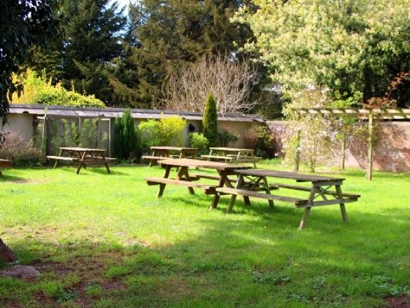 Dog walk with a view and dog-friendly pub, Wiltshire - Wiltshire dog friendly pub and dog walk