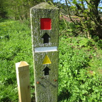 A480 dog walk and pub nearby, Herefordshire - Dog walks in Herefordshire