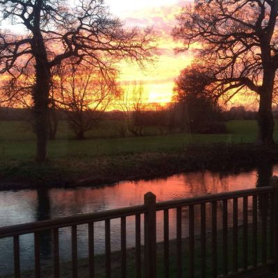 A36 dog-friendly pub and dog walk near Warminster, Wiltshire - Driving with Dogs