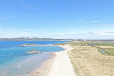 Dog Friendly Beach, RoI - Driving with Dogs