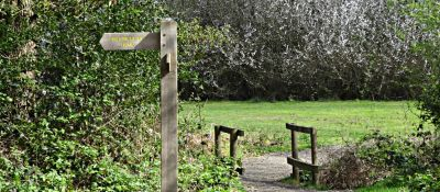 A24 dog walk near Dorking, Surrey - Driving with Dogs