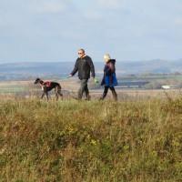 A350 Big dog walk in prehistory, Dorset - IMG_0110.JPG