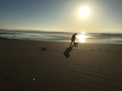 Harlech dog-friendly beach, Wales - Driving with Dogs
