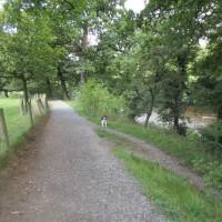 M6 Junction 36 riverside dog walk and pub, Cumbria - Cumbria dog walk