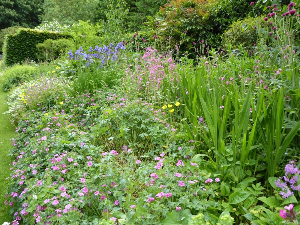 A small-scale hall and pretty dog-friendly gardens, North Yorkshire - Yorkshire dog walks