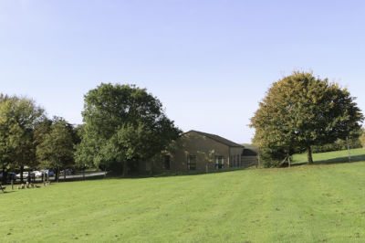 A371 dog-friendly pub and dog walk near Wells, Somerset - Driving with Dogs