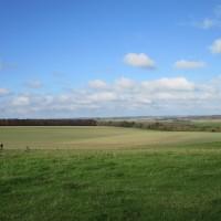 A350 Big dog walk in prehistory, Dorset - IMG_0098.JPG