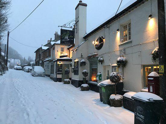 Dog-friendly pub and dog walk near Newton Abbot, Devon - Devon dog-friendly pubs.jpg