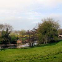 A357 Interesting dog walk and dog-friendly country inn, Dorset - Dorset dog walks and dog-friendly pubs.jpg