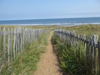 A179 Dog-friendly beach and country walk near Hartlepool, County Durham - Driving with Dogs
